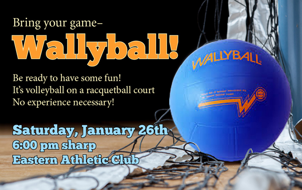 It's Wallyball Time!